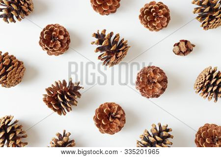 Pine cones flat lay over white background.