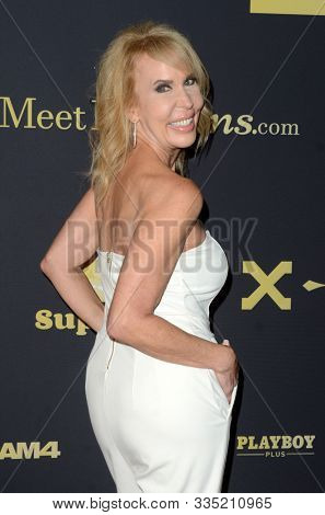 LOS ANGELES - NOV 20:  Erica Lauren at the XBIZ Nominations Gala at the W Hollywood Hotel on November 20, 2019 in Los Angeles, CA