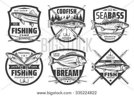 Fishing Club, Fisher Camp And Big Fish Catch Icons. Vector Icons Of Sea And River Fishing For Codfis