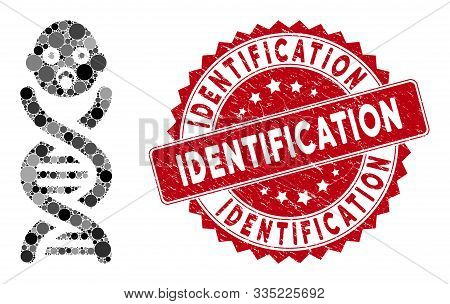 Collage Baby Genes And Corroded Stamp Seal With Identification Text. Mosaic Vector Is Created With B