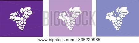 Grape Icon On Color Background Vitamin, Viticulture, Wine, Winery
