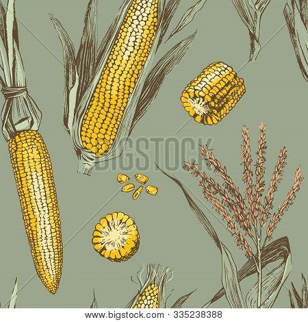 Corn On The Cob Vintage Design Seamless Pattern. Botanical Corn. Vector Illustration. Maize