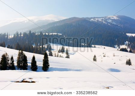 Winter Fairy Tale In Carpathian Mountains. Amazing Landscape Of Borzhava Ridge. Snow Capped Vvelykiy