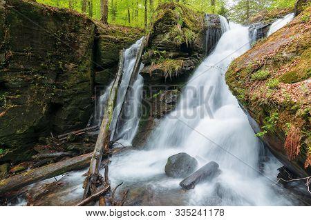 Waterfall Voievodyn Of Ukrainian Carpathians. Powerful Water Stream Of Smooth Polonyna. Fallen Beech