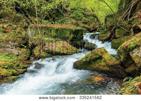 Rapid Stream Among The Massive Boulders In The Forest. Beautiful Nature Scenery In Springtime. Green