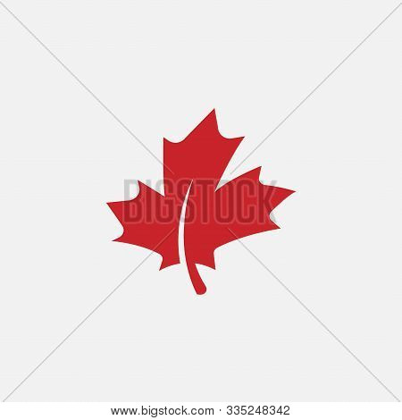 Maple Leaf Logo Template Vector Icon Illustration, Maple Leaf Vector Illustration, Canadian Vector S