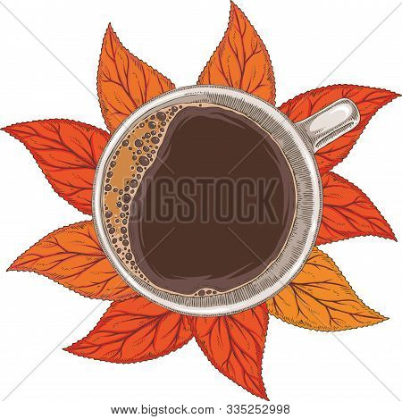 White Cup Of Coffee Top View. Isolated On A White Background