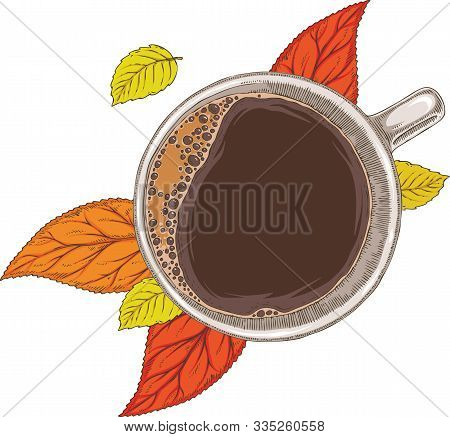 White Cup Of Coffee And Autumn Leaves Top View. Isolated On A White Background