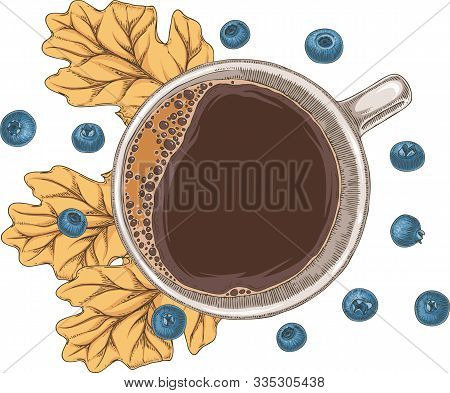 White Cup Of Hot Coffee, Blueberries And Brown Dried Oak Leaf. Top View. Isolated On A White Backgro