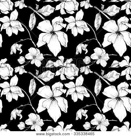 Vector Magnolia Floral Botanical Flowers. Black And White Engraved Ink Art. Seamless Background Patt