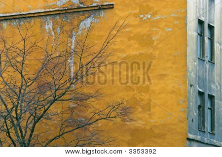 Yellow Corroded Wall
