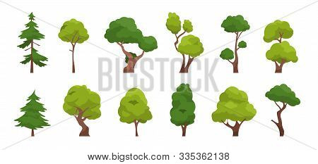 Cartoon Tree. Simple Flat Forest Flora, Coniferous And Deciduous Meadow Trees, Oak Pine Christmas Tr