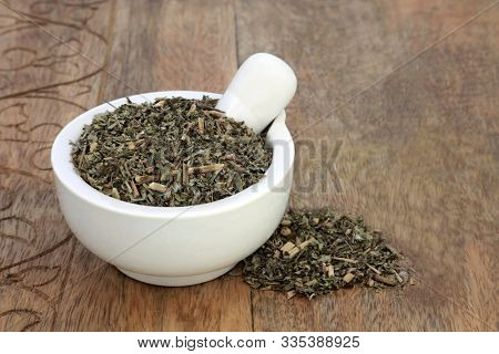 Pulsatilla herb leaf used in herbal medicine to treat headaches, insomnia, boils, asthma, lung diseases, earache, pre menstrual cramps & problems with the male reproductive system. Anenome pulsatilla.