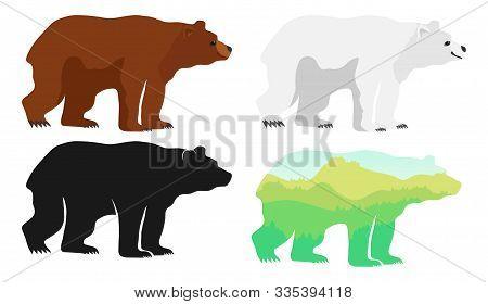 Bear, Bear Silhouette, Polar Bear. Vector Illustration Of An Animal.