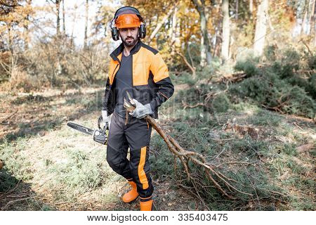 Portrait of a professional lumberjack in protective workwear carrying tree branches while logging in the pine forest poster
