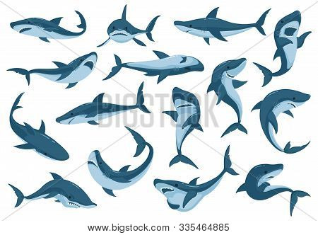 Sea Shark Vector Cartoon Set Icon. Vector Illustration Sea Fish Of Shark On White Background .isolat