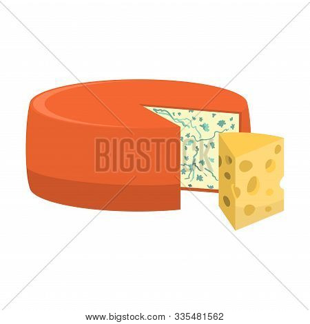 Blue Cheese Head And Piece Of Edam Cheese Vector Illustration