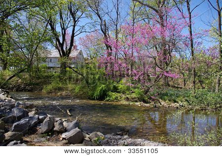 Antietam Creek in Renfrew Park, Waynesboro, PA