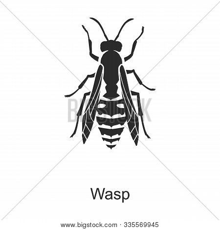 Insect Wasp Vector Icon.black Vector Icon Isolated On White Background Insect Wasp.