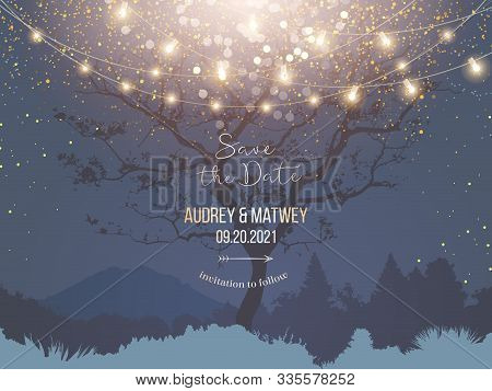Night Christmas Garden Full Of Lights And Snow Vector Design Invitation Frame. Navy Blue And Golden
