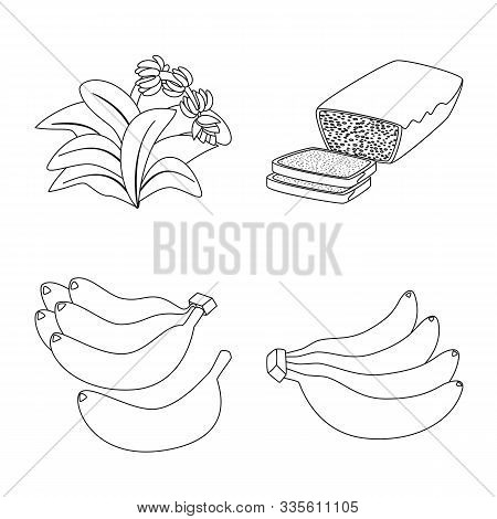 Vector Design Of Organic And Potassium Symbol. Set Of Organic And Diet Stock Symbol For Web.