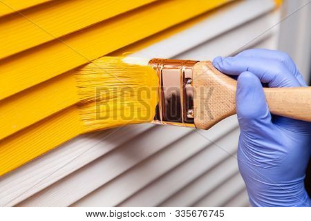 Closeup Female Hand In Purple Rubber Glove With Paintbrush Painting Natural Wooden Door With Yellow