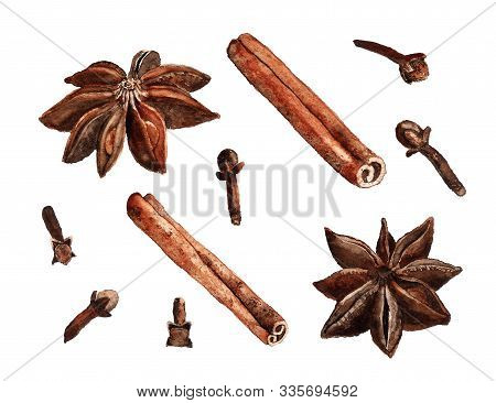 Spices Watercolour On White Background. Aromatic Seasoning Cooking Ingredient. Natural Food. Culinar