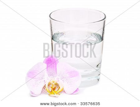 Glass Of Water And Orhid Flower On White Background