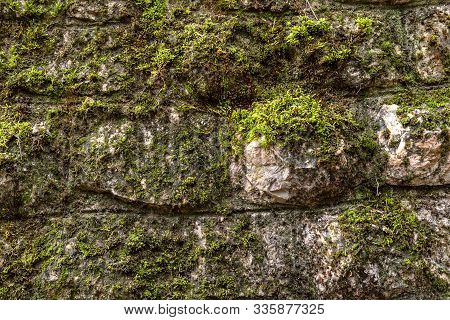 Moss On A Rock Surface. Relief And Texture Of Stone With Patterns And Moss. Stone With Moss. Stones