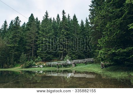 Groom With A Bride Or A Man With A Woman On A Bridge In A Forest Near A Lake. Wedding In Nature Or S