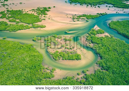 Senegal Mangroves. Aerial View Of Mangrove Forest In The  Saloum Delta National Park, Joal Fadiout,