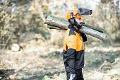 Professional lumberman in protective workwear with a chainsaw carrying wooden logs during the work on logging in the pine forest poster