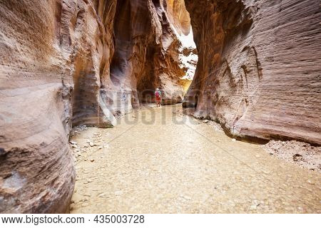 Man hiking in Zion narrow with Virgin river in summer season, Zion National park, Utah, USA