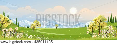 Spring Landscape In Village With Green Field And Sunset,vector Cartoon Summer Rural Farmland With Mo