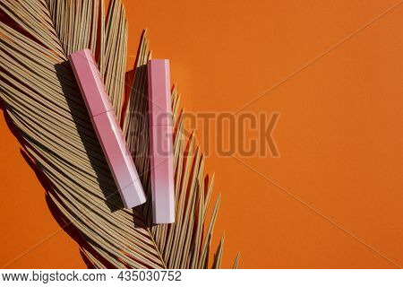 Lip Gloss In A Pink-to-white Gradient Case With Palm Leaf. Top View On Orange Background. Beauty Con