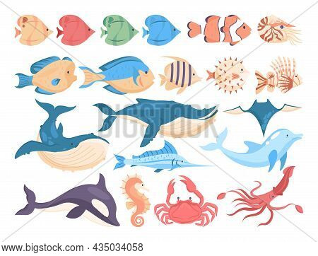 Fish And Sea Creatures Set. Collection Of Aquatic Fauna. Dolphin, Whale