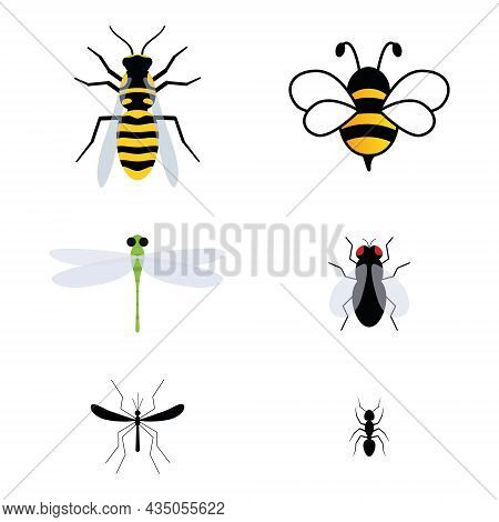 Cute Insect Characters Set. Adorable Bee, Wasp, Ant, Dragonfly, Fly And Mosquito. Vector Isolate On