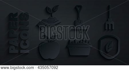 Set Fresh Grass In A Rectangular, Garden Rake, Apple, Shield With Leaf, Shovel The Ground And Plant