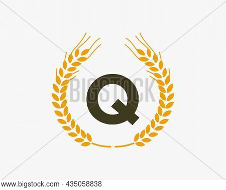 Agriculture Wheat Logo On Q Letter. Letter Q Agriculture Logo Design Template, Food, Healthy Nutriti