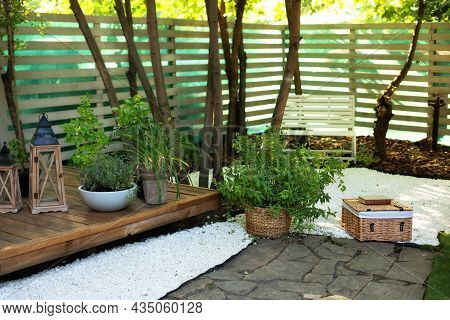 Interior Terrace With Plants And Wooden Porch Of House. Houseplants In Pots In Courtyard. Cozy Garde