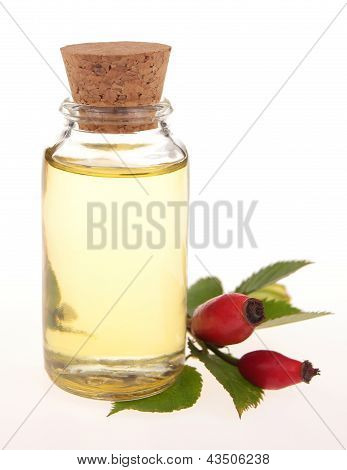 bottle of rose oil - isolated