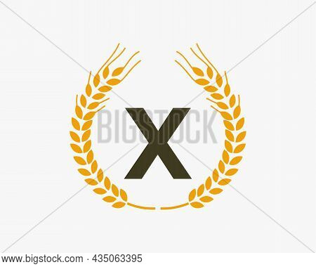 Agriculture Wheat Logo On X Letter. Letter X Agriculture Logo Design Template, Food, Healthy Nutriti