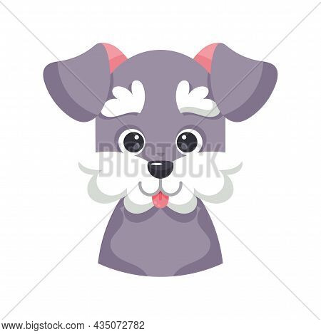 Isolated Cute Avatar Of A Schnauzer Dog Breed Vector Illustration