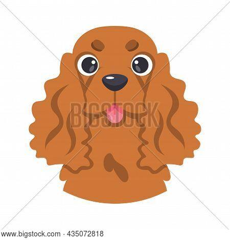 Isolated Avatar Of A Cute Cocker Spaniel Dog Breed Vector Illustration