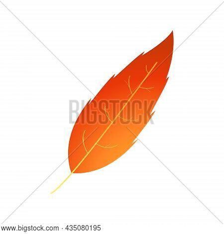 Motley Fire And Rust Colored Autumn Leaf.