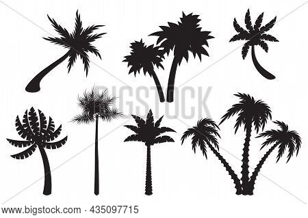 Cute Cartoon Palm Set Silhouettes Isolated On White Background. Exotic Trees In Flat Style. Double,