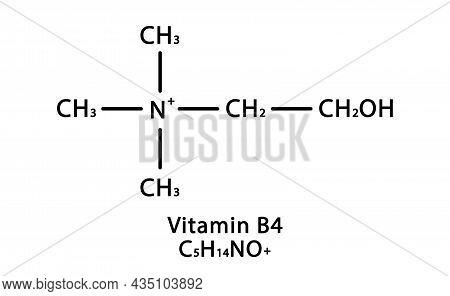 Vitamin B4 Choline Molecular Structure. Vitamin B4 Choline Skeletal Chemical Formula. Chemical Molec