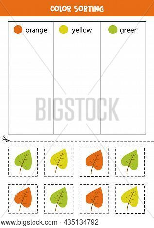 Color Sorting For Kids. Sort Autumn Leaves By Colors. Educational Worksheet.