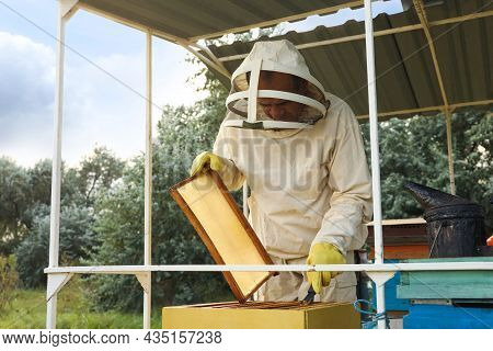 Beekeeper Scraping Wax From Honey Frame At Apiary