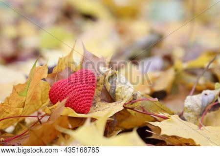 Red Knitted Heart On Yellow Maple Leaves In Autumn Park. Concept Of Romantic Love, Fall Season